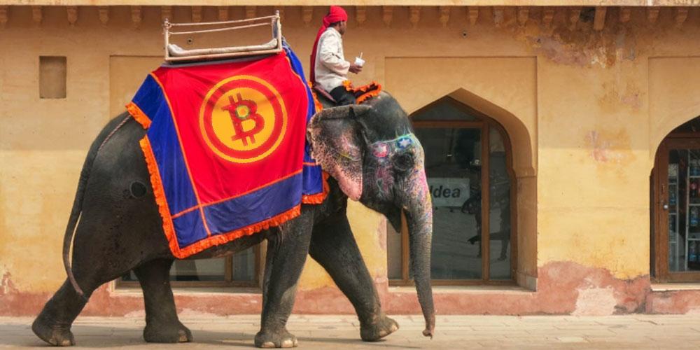 Индия слон биткойн