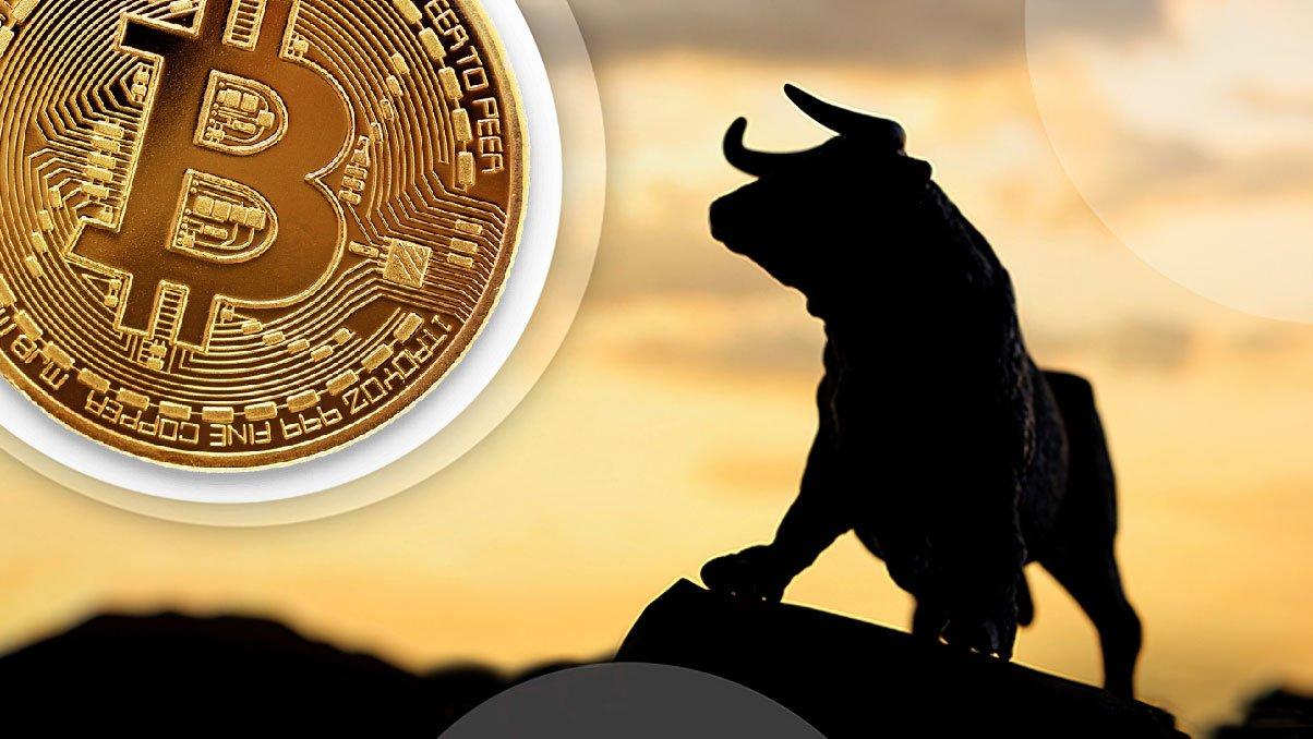 Bull Phas, бычий рынок, ралли биткоина