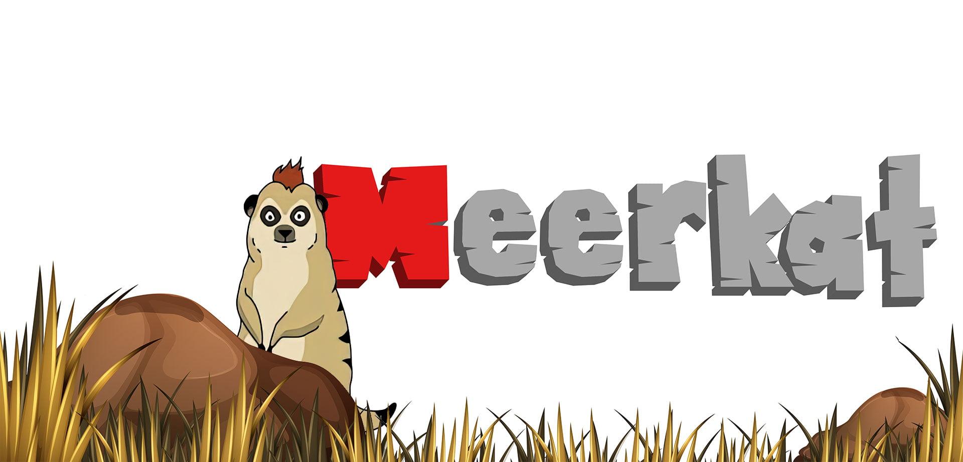 Meerkat-Finance